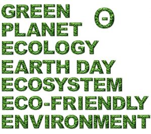 green cleaning products ecofriendly